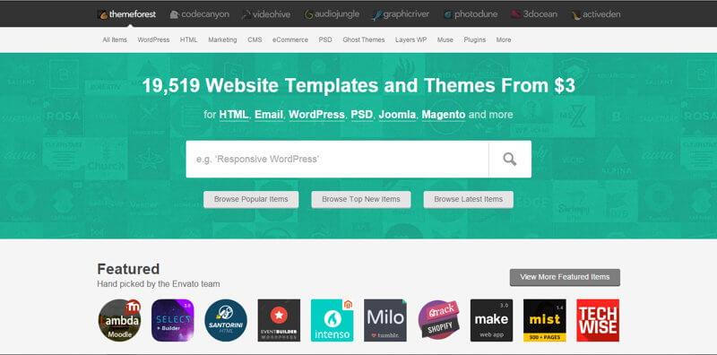 Wybieranie płatnego szablonu WordPress na ThemeForest