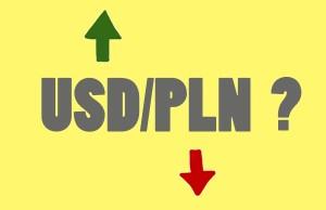 Który broker umożliwia handel na parze USD/PLN ?